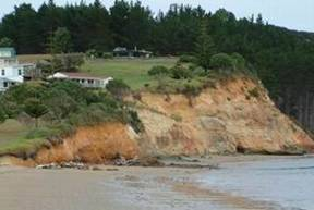 Cliff erosion at Hihi beach.