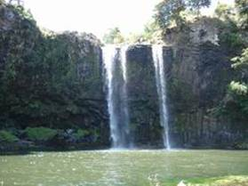 Whangarei Falls during summer flows.