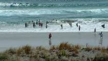 Photo of people enjoying the surf beaches.