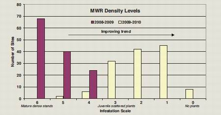 Graph - MWR Density levels.