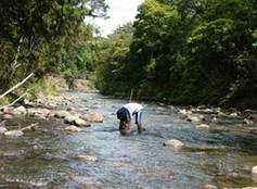 An NRC staff member taking water samples in a shallow river.