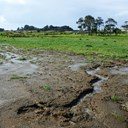 $28,500 fines plus costs for farm effluent offences